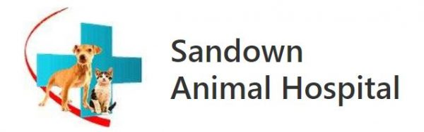 Sandown Animal Hospital